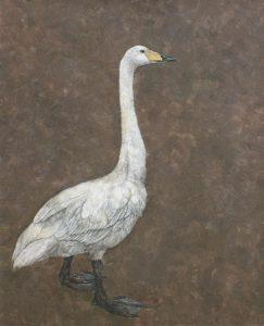 WakamatsuMeiが2010年に制作した紫の木白鳥を描いた日本画の作品。タイトルは『白鳥』